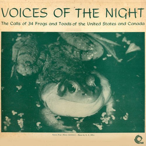 Frogs and Toads of the United States and Canada - Voices Of The Night: The Calls Of Frogs And Toads