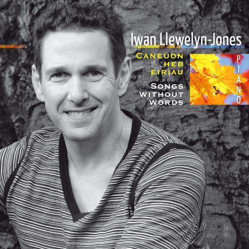 Iwan Llewelyn-Jones - Songs Without Words
