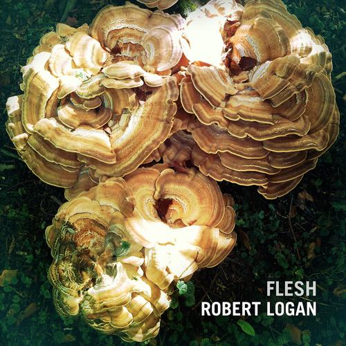 Robert Logan - Flesh