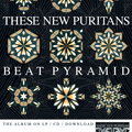 These New Puritans Poster