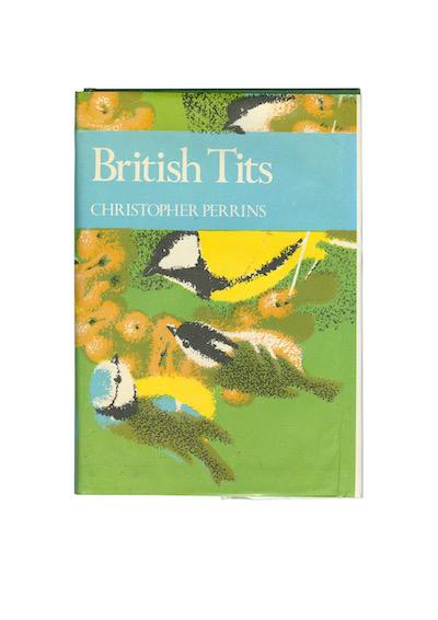 BRITISH TITS A4 PRINT