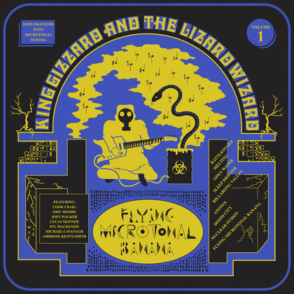 King Gizzard and The Lizard Wizard - Flying Microtonal Banana cover