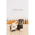 224-page hardback - Sweet Home by Wendy Erskine