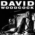 David Woodcock