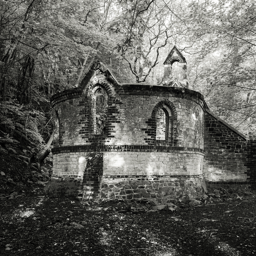 Grasscut - Catholic Architecture / Beacon
