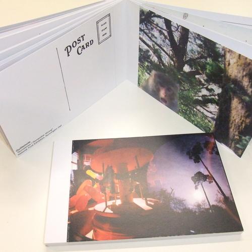 Guillemots Postcard Set