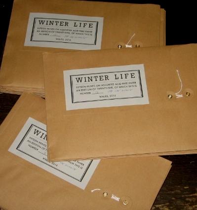 Jeb Loy Nichols - Winterlife
