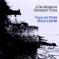 Goreuon Cor Meibion Dyffryn Tywi / The Very Best Of Dyffryn Tywi Male Choir