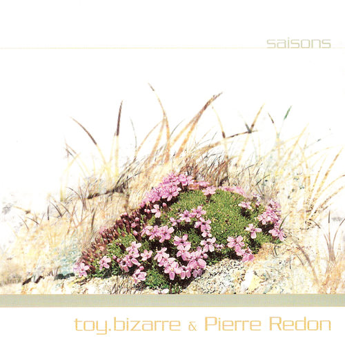toy.bizarre & Pierre Redon - Saisons