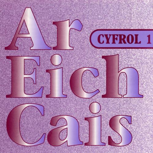 Amrywiol / Various Artists - Ar Eich Cais