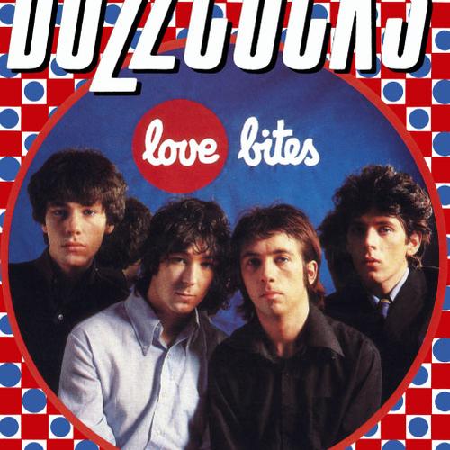 Buzzcocks - Buzzcocks / Love Bites poster