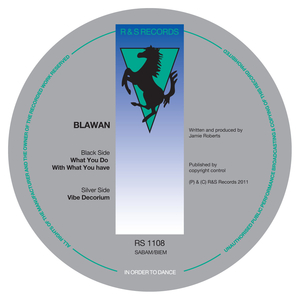 Blawan - What You Do With What You Have