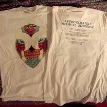 AIU Tour T-shirt