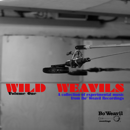 Various Artists - Wild Weavil Volume 1 (collection of experimental music from Bo' Weavil Recordings)