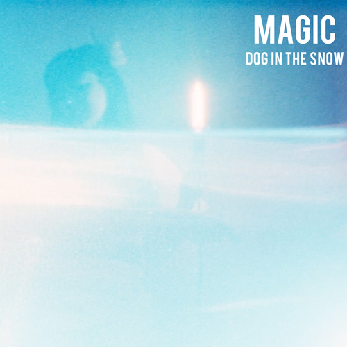 Dog In The Snow - Magic