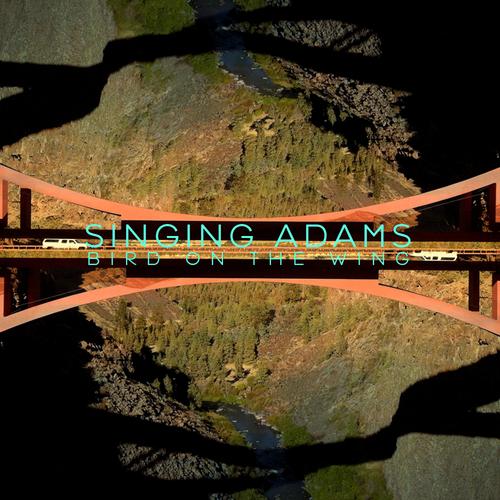 Singing Adams - Bird On The Wing