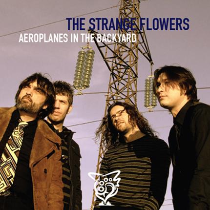STRANGE FLOWERS, THE - Aeroplanes in the Backyard