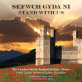 Sefwch gyda ni / Stand With Us