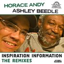Inspiration Information - The Remixes