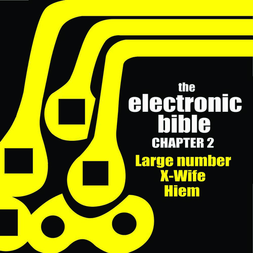 Large Number X-Wife Hiem - The Electronic Bible chapter 2