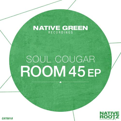 Soul Cougar - Room 45