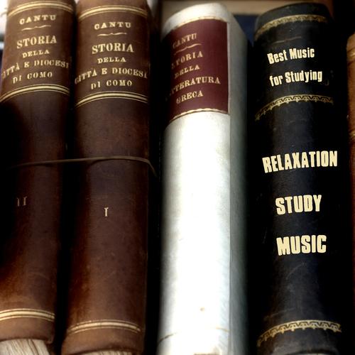 Relaxation Study Music - Best Music for Studying,Musique Pour l'étude,Musik für das Studium,Música Para el Estudio