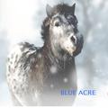 Blue Acre