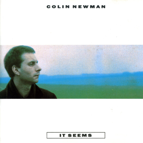 Colin Newman - It Seems