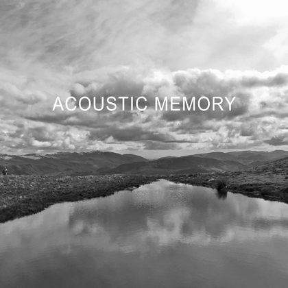 Dan Michaelson and The Coastguards - Acoustic Memory cover