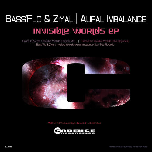 Bass'flo & Ziyal - Invisible Worlds