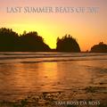 Last Summer Beats of 2017