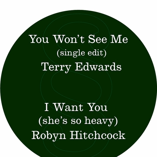 Terry Edwards / Robyn Hitchcock - You Won't See Me / I Want You (she's so heavy)
