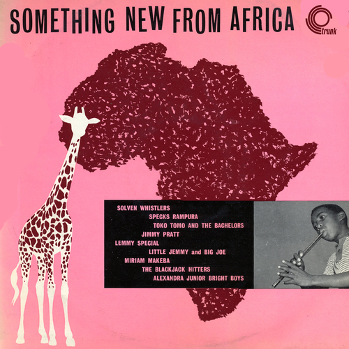 Various Artists - Something New From Africa