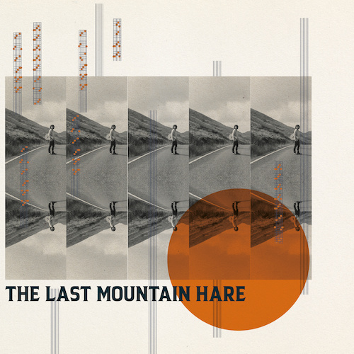 The Last Mountain Hare