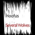 Several Wolves