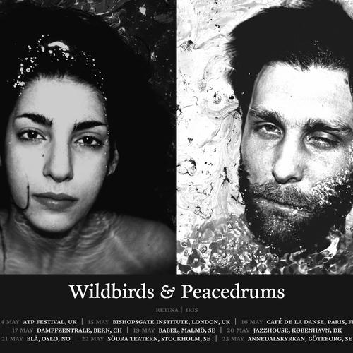 Wildbirds & Peacedrums - Wildbirds & Peacedrums 2010 tour poster