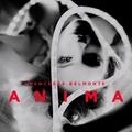 Anima *SIGNED*