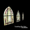 Trembling Blue Stars - The Last Holy Writer CD