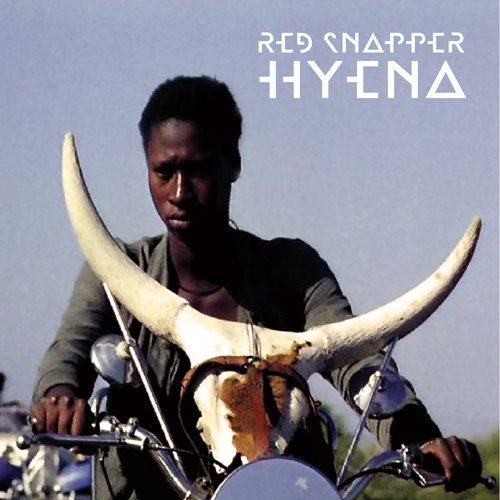 Red Snapper - Hyena