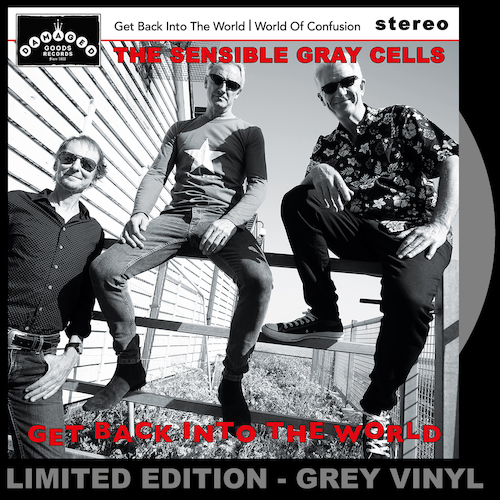 The Sensible Gray Cells - Get Back Into The World - GREY VINYL 7""