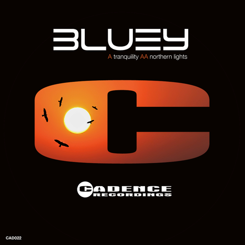 Bluey - Tranquility