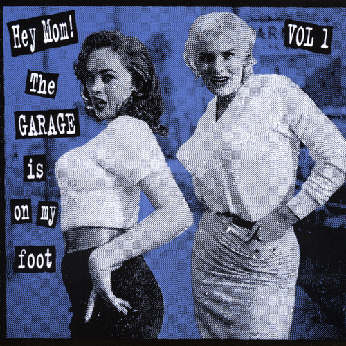 Various Artists - Hey Mom! The Garage Is On My Foot