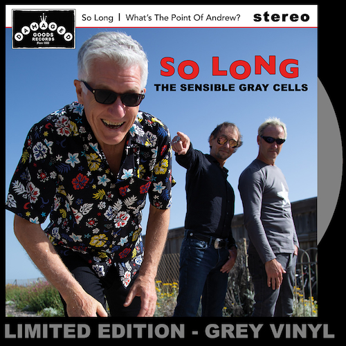 """The Sensible Gray Cells - So Long/What's the Point of Andrew? GRAY VINYL 7"""""""