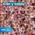 Can Y Babis