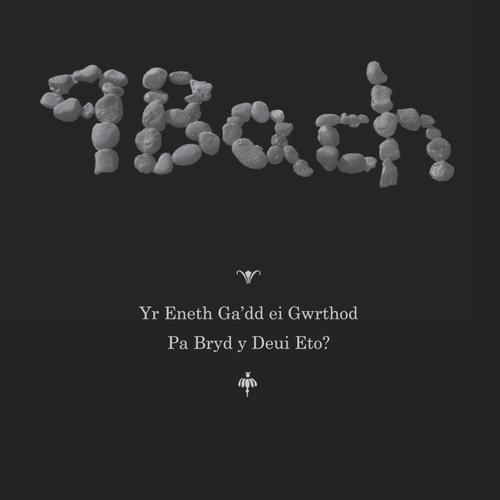 9bach - Yr Eneth Ga'dd ei Gwrthod