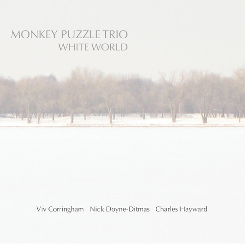 Monkey Puzzle Trio - White World