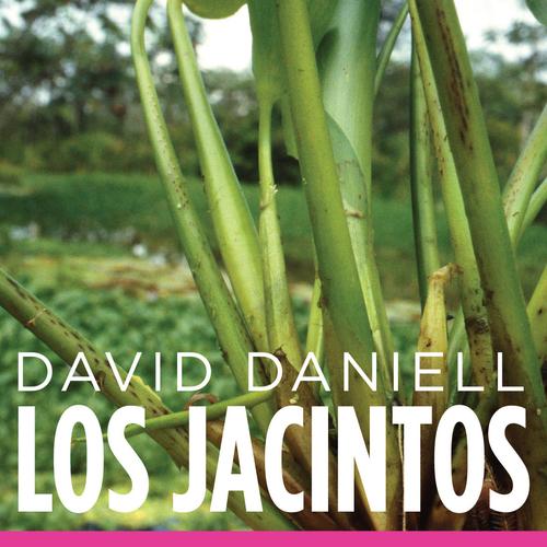 David Daniell - Los Jacintos