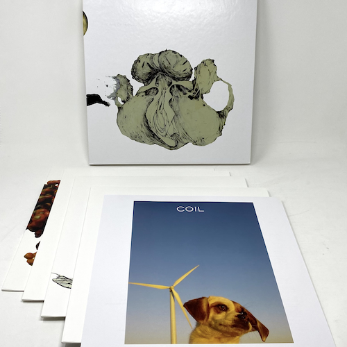 The Ape Of Naples/The New Backwards - 4LP BOX SET