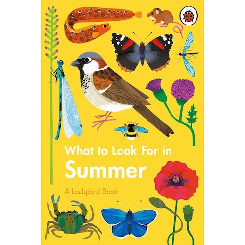What to Look For in Summer: A Ladybird Book