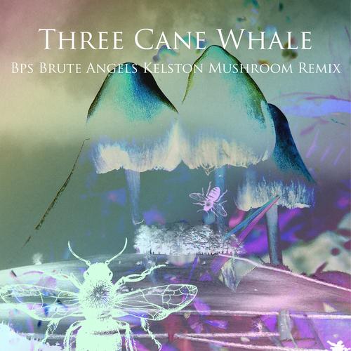 Three Cane Whale - Brute Angels